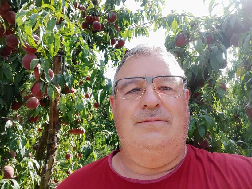 Josep Lluís Escuer, a un dels seus camps de nectarines. // Imatge cedida